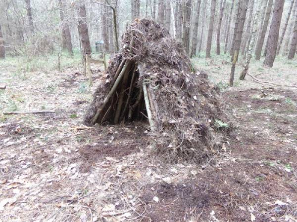 Bushcraft Shelter Build Experience Near York Suitable for Adults Image 4