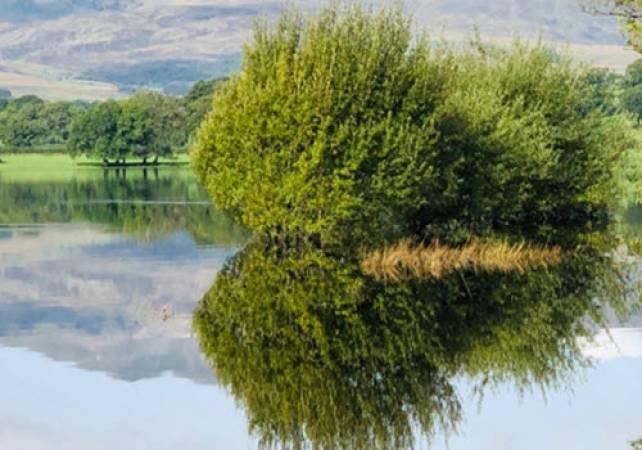 Family Day out Exploring Lake Bala, North Wales in Canoe or Kayak Image 3
