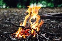 Thumbnail - Bushcraft & Survival Course  - in Sherwood Forest Nottingham Image 0