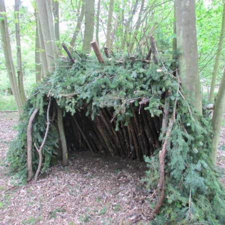Bushcraft Shelter Build Experience Near York Suitable for Adults Image 1
