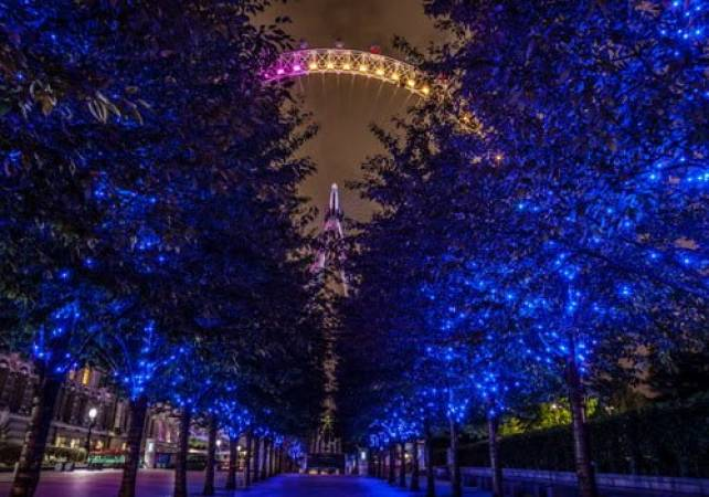 London Night Photography Private Tour South Bank and Westminster Image 5