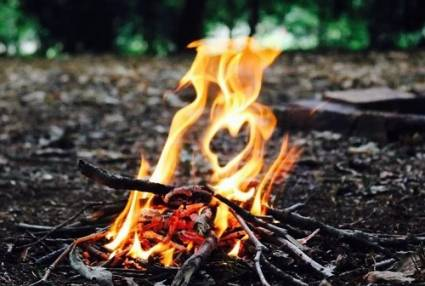 Bushcraft & Survival Course  - in Sherwood Forest Nottingham Image