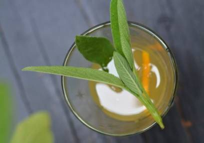 Herb Masterclass for Cocktails & Teas London Locations Image