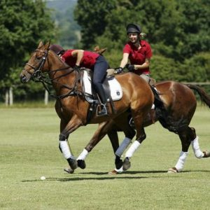 Two people playing polo on horses