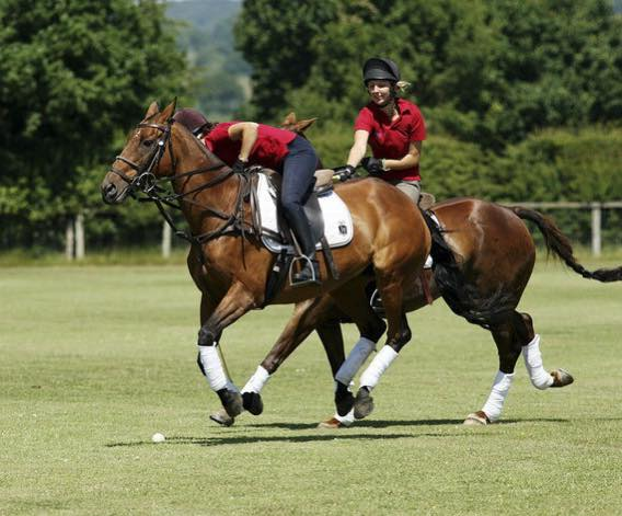 polo lessons academy cheshire Terms & Conditions