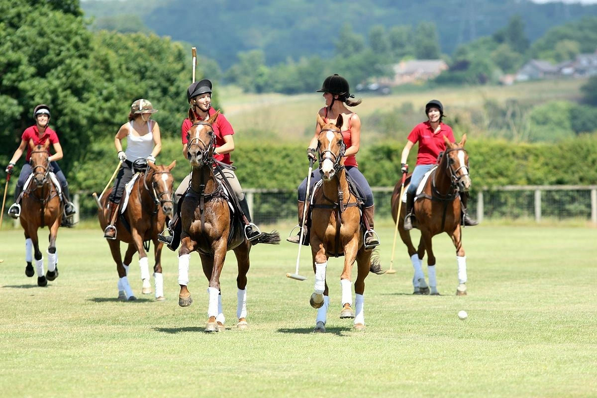 Learn To Play Polo at Polo Academy Gallery Image