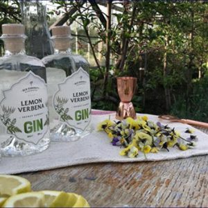 Old curiosity Gin bottles and botanicals