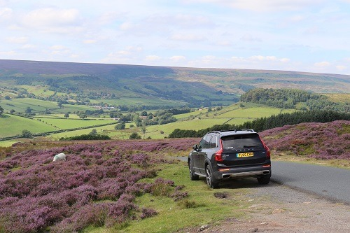 Private Tours of The Yorkshire Moors Gallery Image