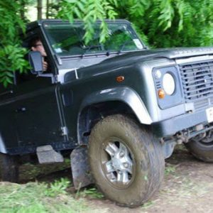 Land Rover coming out of forest