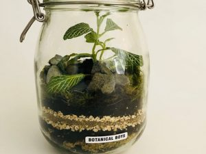 botanical in a jar