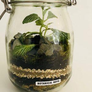 botanical in a jar