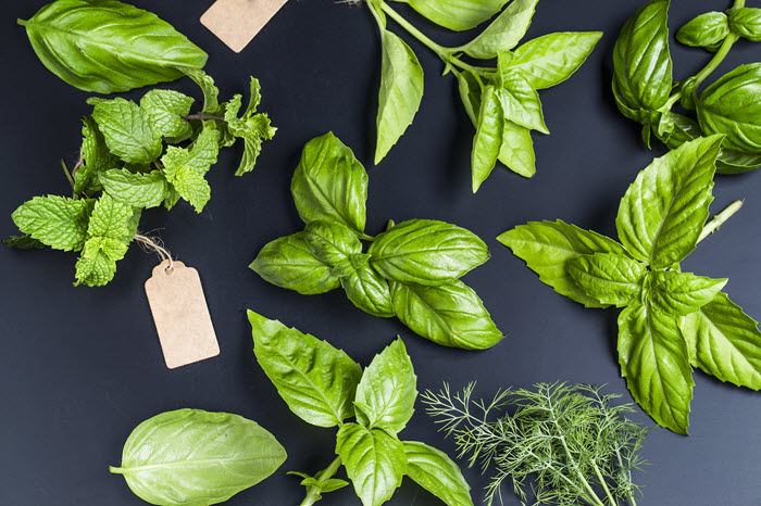 Herbs for the BBQ Recipes