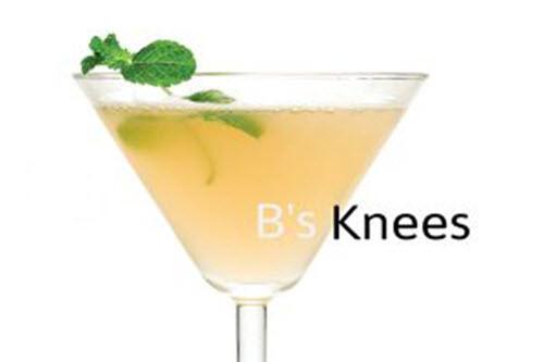 Bs-Knees-Clean-Gin Cocktail
