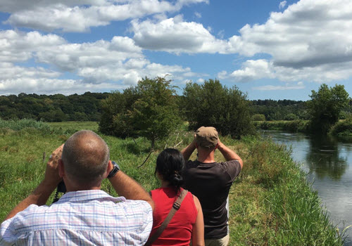 Wildlife Walk with The Bird Whisperer For One Gallery Image