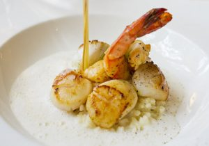 scallops and king prawn on a white plate